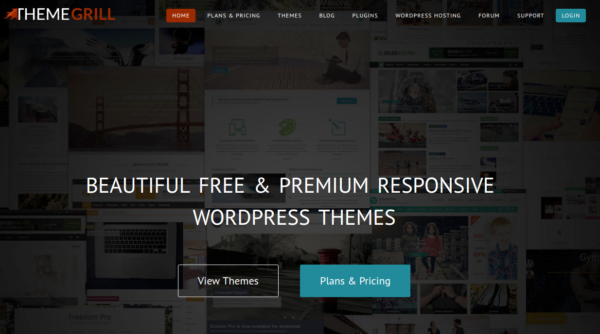 ThemeGrill Blog features the WordPress tutorials, how to do guides, tips and tricks, WordPress reviews, news, trends, and information. Besides that, it has WordPress theme and plugin collections, WP reviews as well as WordPress coupons and deals.