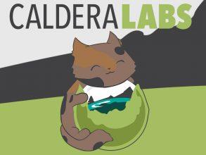 Caldera Labs